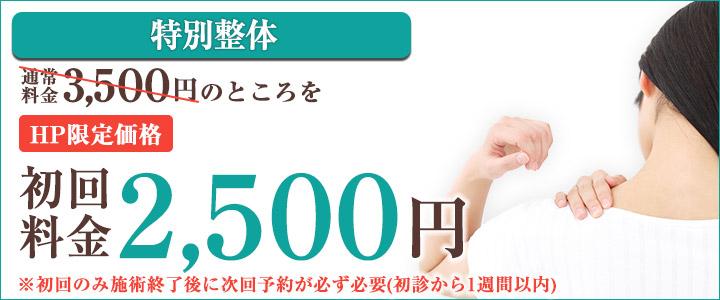 四十肩・五十肩初回料金¥2000