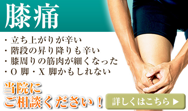 おすすめ:膝痛